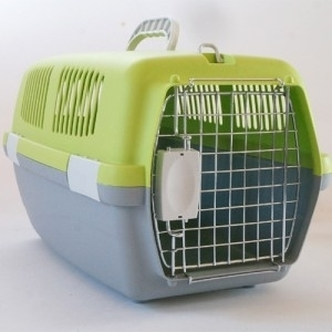 도기프렌드 패션이동장(소)-그린 강아지이동장 이동가방